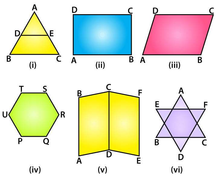 RD Sharma Solutions for Class 6 Chapter 15 Ex 15.1 Image 1