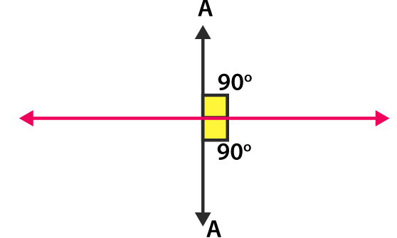 RD Sharma Solutions for Class 6 Chapter 19 Ex 19.2 Image 2