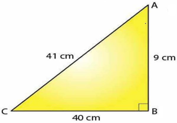 Selina Solutions Concise Maths Class 7 Chapter 16 Image 10