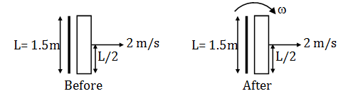 Solved Question Paper of KVPY-SX 2019 Physics