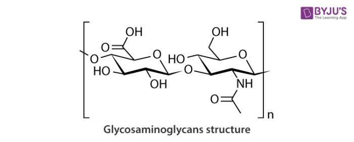 Glycosaminoglycans Structure