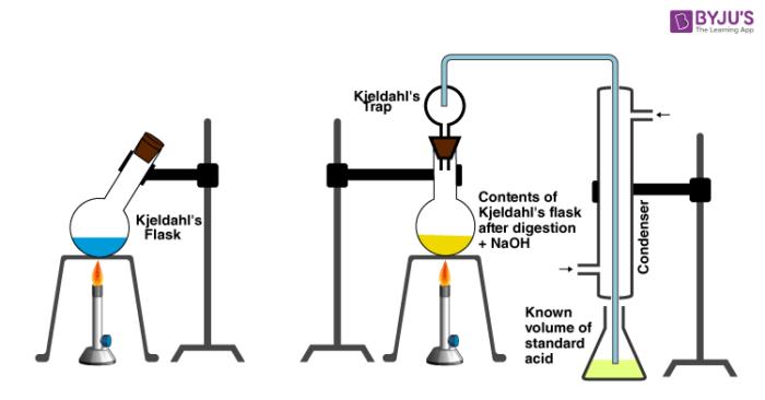 Kjeldahl Method