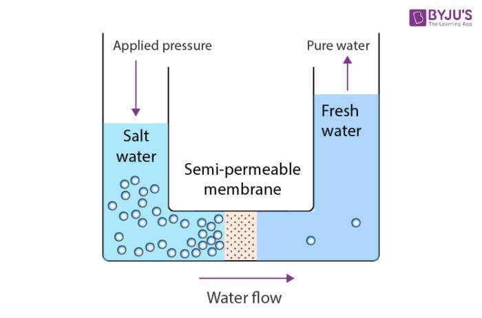 Reverse Osmosis Process- Illustration
