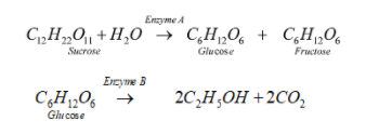 JEE Main 2021 March 17th Shift-2 Chemistry Paper Question 2