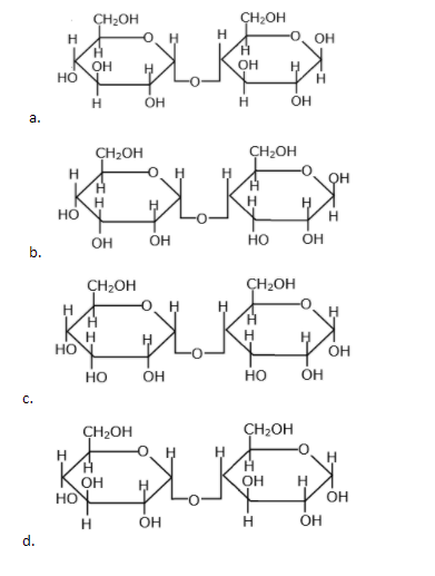 JEE Main 25th Feb Shift 2 Chemistry Paper Question 12