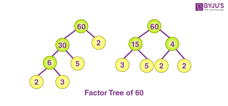 Factor trees for 60