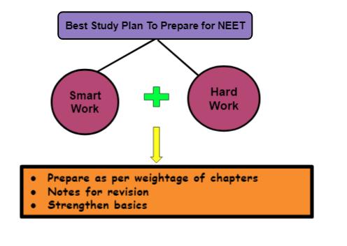 Best study plan for NEET