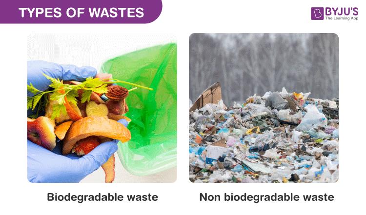 Dry Garbage