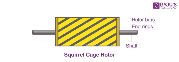 Squirrel Cage Rotor