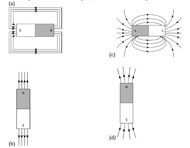 CBSE Class 10 Science MCQ Chapter 13 Magnetic Effects of Electric Current-1