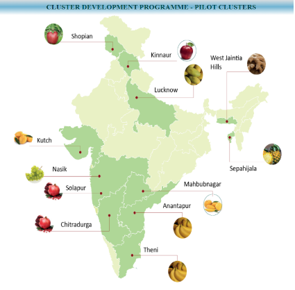 Horticulture Cluster Development Program
