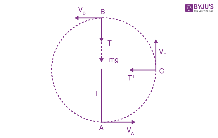 Solution Papers Law Of Conservation Of Momentum