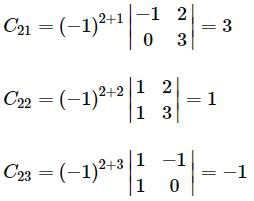 Adjoint of a matrix example 2.2