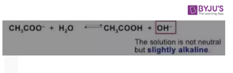 Acetate reacts with Water