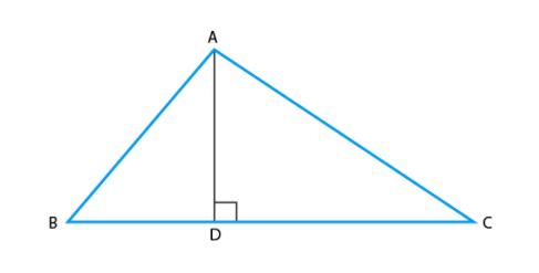 Class 10 Maths Chapter 6 Triangles MCQ 12A