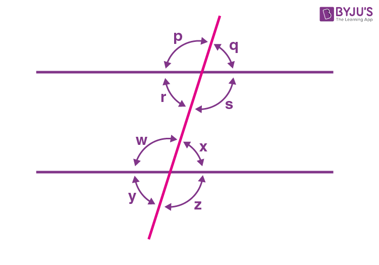 Class 9 Maths Chapter 6 Lines and Angles MCQs Example 9