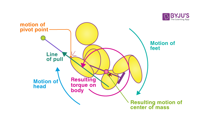 Angular momentum conservation on a swing in sitting position