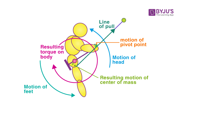 Angular momentum conservation on a swing in sitting position back