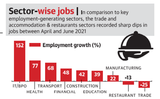 Sector-wise Jobs