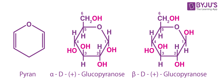 Glucose Cyclic Structure