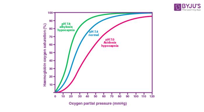Effect of pH on oxygen dissociation curve