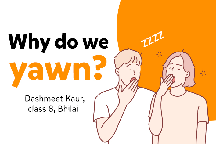 Why Do We Yawn & Are Yawns Really